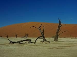Deine Reiselust   Namibia   Dead Vlei