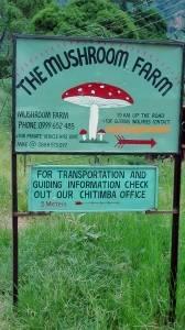 Deine Reiselust | An der Livingstonia / Chitimba Kreuzung