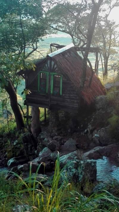 Deine Reiselust | Mushroom Farm